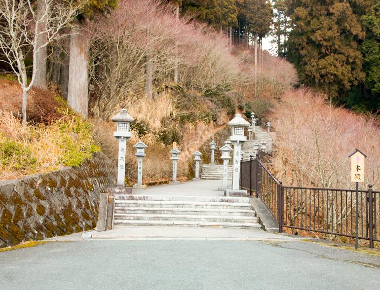 階段で秋葉神社を目指します。