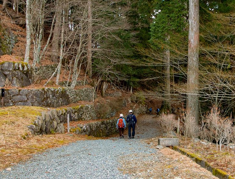 秋葉神社に着き、黄金鳥居へ向かう階段の脇から、山を降りていきます。